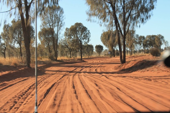 A section of the track (image supplied).