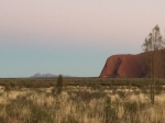 The Olgas in the background of Uluru!
